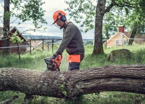 How Does Husqvarna 135 Mark II Chainsaw Works